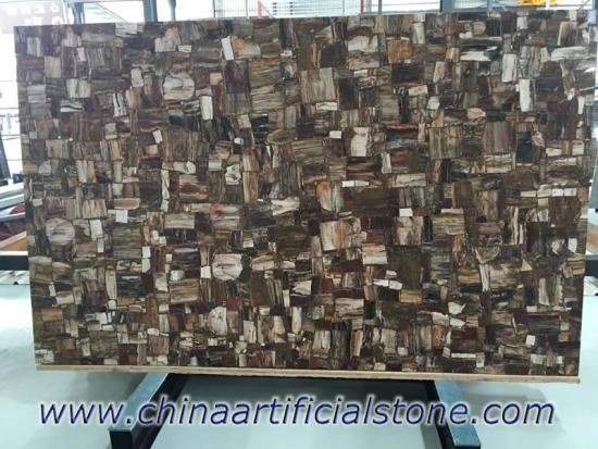Petrified Wood Semi Precious Stone Slabs